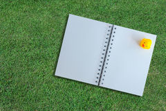 White page of notebook on grass texture Royalty Free Stock Photo