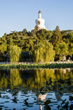 White pagoda in Beihai park Royalty Free Stock Photography