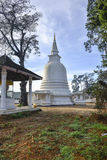 The White Pagoda Stock Photography
