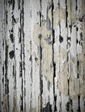 White Paint Peeling off Wood Stock Photo