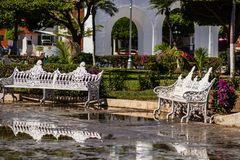 White painted benches in a park royalty free stock photo