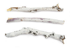 White painted branches Royalty Free Stock Photo