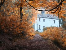 White painted cottage surrounded by beautiful autumn trees. At the end of a woodland forest path Stock Photos