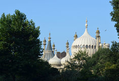 White palace with domes among trees Stock Images
