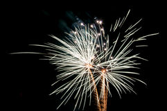 White palm shaped fireworks. On black background royalty free stock photos