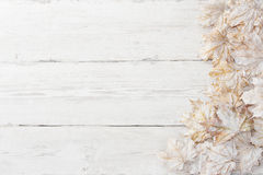 White pamle leaves, wooden background stock image