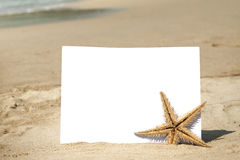 White paper on the beach. Blank piece of paper and starfish on the sand with beach background Royalty Free Stock Photos