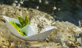White paper boat and fluffy dandelion. Childhood dreams. Romantic dreams and fantasies. White paper boat on the background of clear transparent water and stock photo
