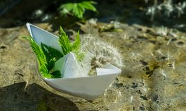 White paper boat and fluffy dandelion. Childhood dreams. Romantic dreams and fantasies. White paper boat on the background of clear transparent water and royalty free stock image