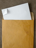 White paper from a brown open envelope Stock Photos