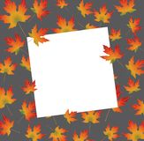White paper card on autumn backround maple leaves. Vector illustration Stock Images