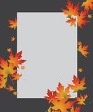 White paper card on autumn swirl maple leaves Royalty Free Stock Images
