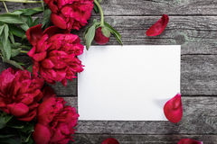 White paper card, pink peonies and petals on rustic wooden background Royalty Free Stock Images