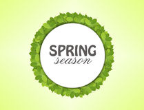 White paper circle made of green leaves with spring season Royalty Free Stock Photo