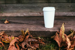 White paper coffe cup with brutal autumn leaves Royalty Free Stock Images