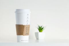White Paper Cup and green potted plant Royalty Free Stock Images