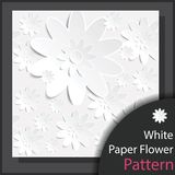 White Paper Flower Pattern - Vector. White Paper Flower Pattern for decoration artwork  - Vector Royalty Free Stock Photography