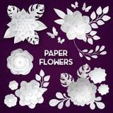 White Paper Flowers Dark Background Royalty Free Stock Photo