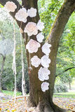 White paper flowers and swing on tree. Front view of white paper flowers and swing on wooden trunk. Decoration on tree. Wedding detail Stock Photography