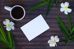 White paper and green bamboo flat lay. Blank card mockup with coffee cup. Royalty Free Stock Image