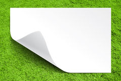 White paper on green grass background. High texture Stock Photos