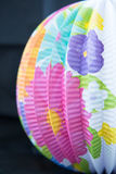 White Paper Lantern With Flowers Royalty Free Stock Photos