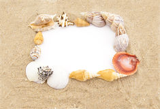 White paper for note  in a frame from sea shells Stock Photography