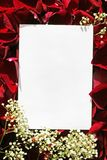 White paper over roses. One letter in the red roses petals royalty free stock images
