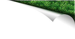 White paper page with grass in curl Stock Images