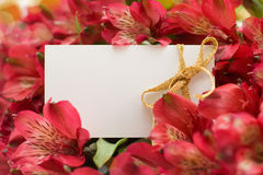 White paper with red flowers Stock Image