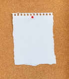 White paper with red pin on cork board. The white paper with red pin on cork board Stock Images