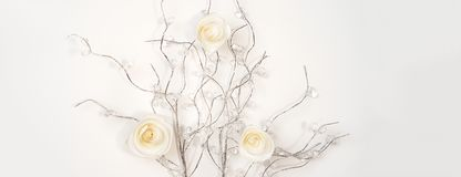 White paper Roses on silver branches on white background. Flat lay, top view. Valentine`s Day background stock photo