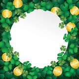 White paper on shamrock leaves and coin Royalty Free Stock Photos