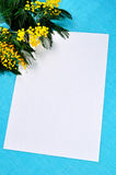 White paper sheet with copy space near bright yellow fluffy mimosa flowers on the turquoise linen tablecloth. Stock Photo