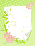 White paper sheet with summer flowers. Stock Photography
