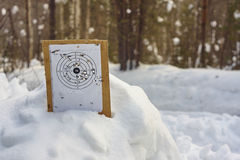 White paper shooting mark with bullet holes on piece of plywood in wild forest. Stock Images
