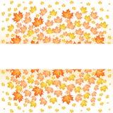 White paper stripe banner on orange autumn background. Vector illustration of maple leaf fall. White paper stripe banner on orange autumn background. Vector Stock Photo