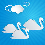 White paper swans and clouds Stock Images