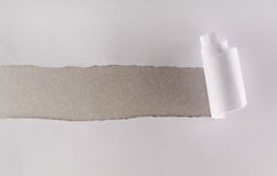 White paper torn revealing gray cardboard layer. White paper torn revealing a strip of gray cardboard layer stock images