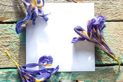 White paper on the wooden background with dried flowers Iris Stock Photography