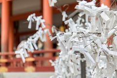 White papers with prayers tied on a branch of a tree Stock Photography