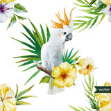 White parrot, hibiscus, tropical, palm trees, flowers, pattern, wallpaper Stock Photos