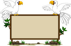 White parrots's sitting on blank board Royalty Free Stock Photo