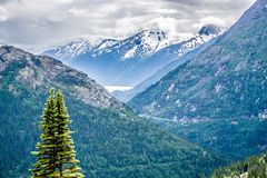 White pass mountains in british columbia Stock Image