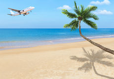White passenger airplane landing above blue sea with coconut palm tree. On the tropical beach Royalty Free Stock Photography