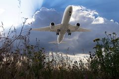 White passenger plane flies in the blue cloudy sky. Aircraft flying over the green grass field. Airplane bottom view Stock Photo
