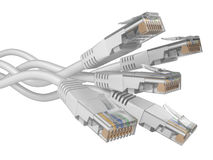 White patchcord network Cables Royalty Free Stock Images