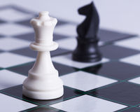 White pawn and  black knight on chess board Stock Image