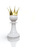 White pawn king Stock Photo