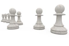 White pawns in a row Stock Image